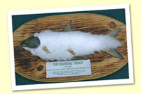 The Alpino-Pelted Trout
